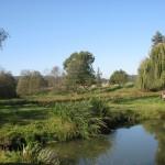 Naturbelassene Teichanlage