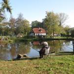 Teichlandschaft Teich 3